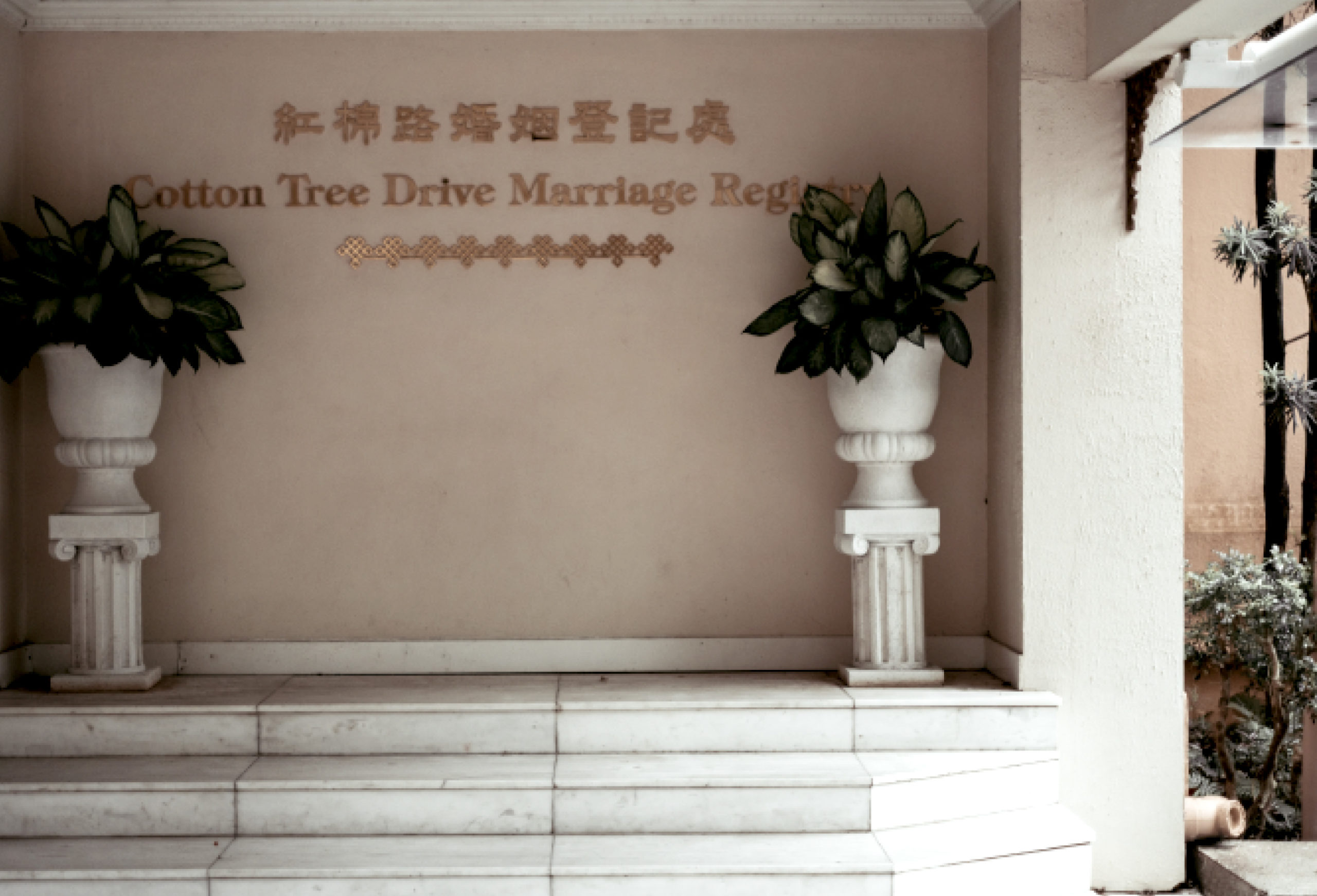 Cotton tree drive marriage registry
