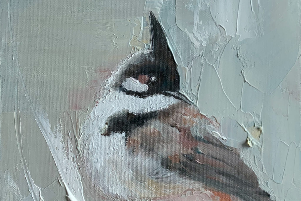 bird painting-Red-whiskered bulbul-cover